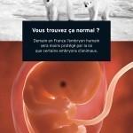 Le Téléthon finance des recherches sur l'embryon humain: Vous trouvez ça normal? | FAITES DU BÉNÉVOLAT dans les restos du coeur | Scoop.it