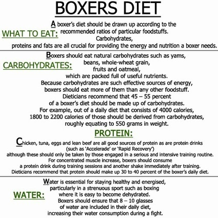 Bethebest3 Boxers Diet Be A Professional Boxer