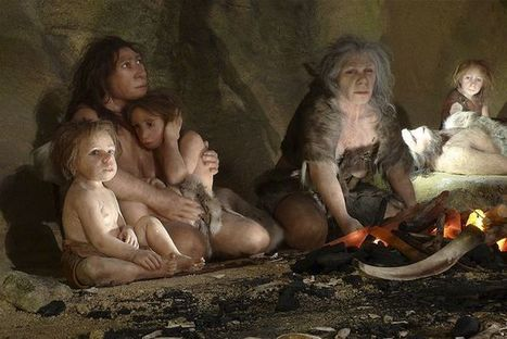 Skull sheds light on human-Neanderthal relationship | Ancient History - Amplectentem Tempus et Mutatio | Scoop.it