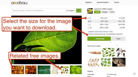 Free Technology for Teachers: Pixabay Updates Make It Easier to Find Quality Public Domain Images | Technology Tools and Software | Scoop.it