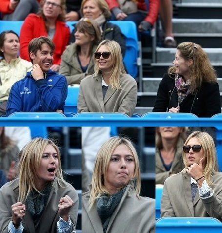 Quand Maria supporte Grigor... | Tennis , actualites et buzz avec fasto-sport.com | Scoop.it