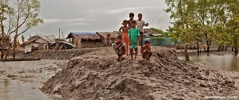 Climate justice | Our position | The Elders | Global Politics - Yemen | Scoop.it