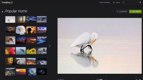 Five Best Sites For Free High-Quality Images | iEduc | Scoop.it