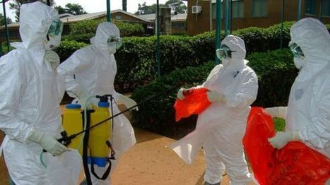 4 Health Care Workers Among 66 Dead in Ebola Outbreak - ABC News (blog) | Ebola outbreack | Scoop.it