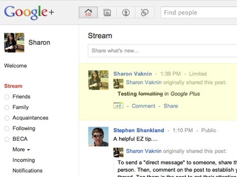 Google+ spurs margin worry, questions about ROI for search giant | ZDNet | The Google+ Project | Scoop.it