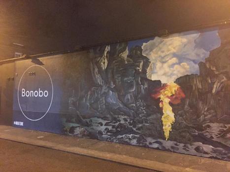 DIY Mag - Nov 2016 - Bonobo is up to something | Bonobo | Scoop.it