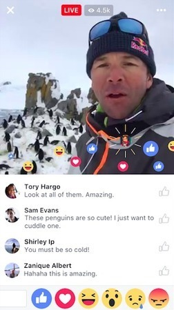 How to Use Facebook Live: A Complete Guide | Social Inside | Scoop.it