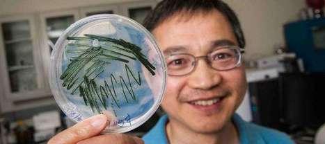 Ethylene production via sunlight opens door to future   Era del conocimiento   Scoop.it