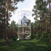 Projet d'architecture Tree in the house | Le flux d'Infogreen.lu | Scoop.it