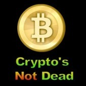 Bitcoin's Not Dead | Bitcoin | Scoop.it