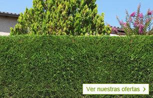 Viveros y Jardinería online - Planfor   Con lápiz y teclas   Scoop.it