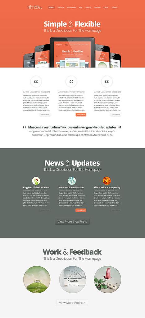 Nimble WordPress Theme by Elegant Themes   SEO Labs   Scoop.it