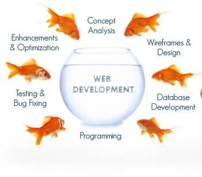Web Designing Company Jaipur | Web Development Company in Jaipur | Scoop.it
