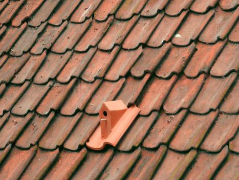 birdhouse rooftile by klaas kuiken | inquietario* | Scoop.it