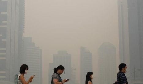 Le réchauffement climatique pourrait bientôt causer 250000 décès de plus par an | Theo Bcn | Scoop.it