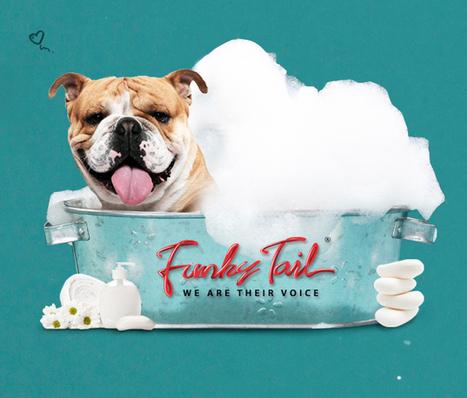 Funky Tail 寵物生活 | 麥飛佛創意 | Scoop.it