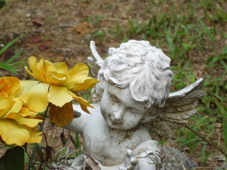 Lost Paradise: A Poem and a Prayer for the Survivors | Body, Heart, Mind, and Soul | Scoop.it