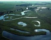 Wetlands Likely to Blame for Greenhouse Gas Increases: Study   Sustain Our Earth   Scoop.it