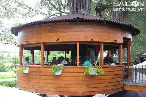 Tree house coffee shop sets off buzz in Ho Chi Minh City | Things for you | Scoop.it