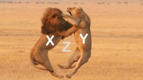 Génération X, Y et C : 3 visions du monde différentes, 1 même combat !   Web 2.0 et société   Scoop.it