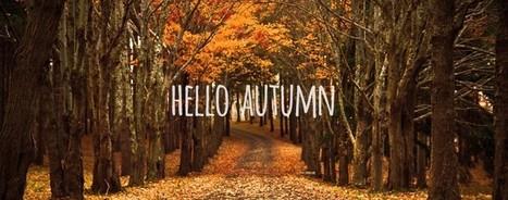 Freebie: 10 Autumn Facebook timelines - PremiumCoding | MarketingHits | Scoop.it