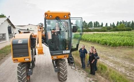 Elles investissent la viticulture | Vin Vignes et femmes | Scoop.it