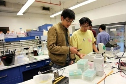 iGEM project addresses 'space' constraints - The Brown Daily Herald - Serving the community daily since 1891 | SynBioFromLeukipposInstitute | Scoop.it
