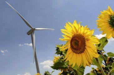 Día Mundial de Medio Ambiente: Un 40 aniversario con 40 demandas verdes que contribuirán a  crear empleo -- Qué.es -- | Planeta Tierra | Scoop.it