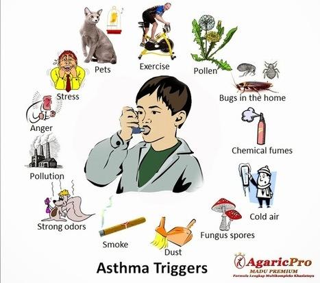 Obat Herbal Ampuh Mengobati Penyakit Asma ~ AgaricPro | Solusi Masalah Kesehatan Anda | bestagaric | Scoop.it