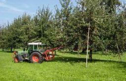 Kabinett beschließt Änderung im Saatgutverkehrsgesetz | Agrarforschung | Scoop.it