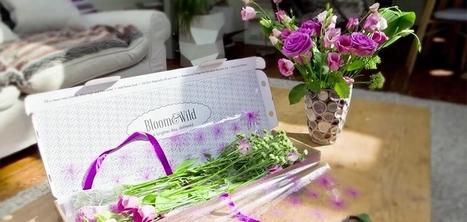 Bloom & Wild : des fleurs que vous recevez dans votre boîte aux lettres sans se détériorer | Innovations, tendances & start-up | Scoop.it