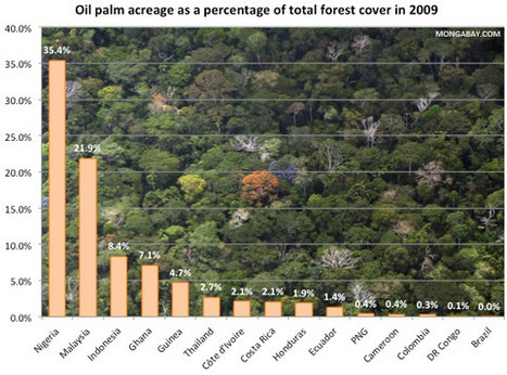 Surging demand for vegetable oil drives rainforest destruction | Biodiversity IS Life  – #Conservation #Ecosystems #Wildlife #Rivers #Forests #Environment | Scoop.it