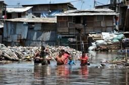 Basuki's Vision of Flood-less Jakarta Draws Doubts - The Jakarta Globe   Scoop Indonesia   Scoop.it