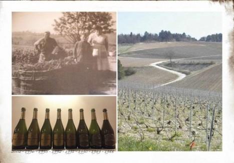 Michel Furdyna – la verticale dal 2002 al 1988 di Champagne Brut Prestige - Into the Wine   Into the Wine   Scoop.it
