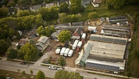 How to feed 10,000 people from food grown on 3 acres in the city | Économie circulaire locale et résiliente pour nourrir la ville | Scoop.it