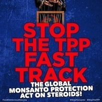 Tell Congress and President Obama to end the secret trade deals. Stop the fast track on the TPP, the global Monsanto Protection Act on steroids! | GMOs & FOOD, WATER & SOIL MATTERS | Scoop.it
