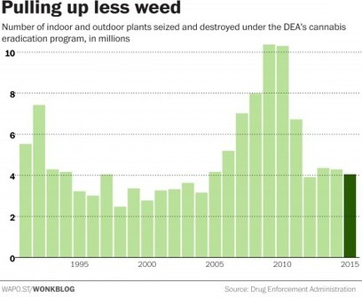 The government spent $18 million destroying marijuana plants last year | drug war | Scoop.it