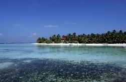 """Rio+20: les Maldives veulent devenir """"la plus grande réserve marine du monde""""   Des 4 coins du monde   Scoop.it"""