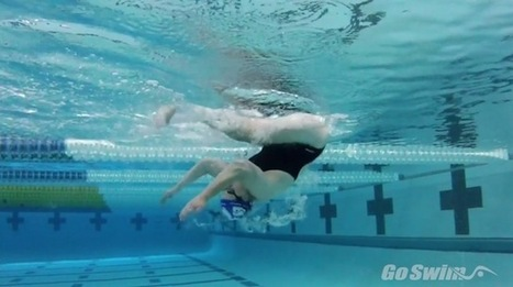 Masters Content - Learn Your Backstroke Count - GoSwim! | My favorites | Scoop.it