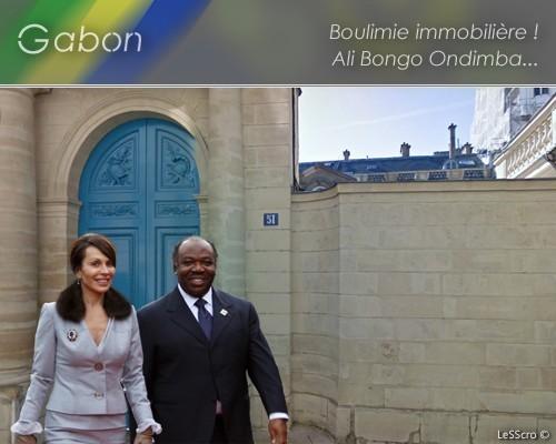 ALI BEN BONGO ONDIMBA, la boulimie immobilière... - nouvelobs.com (Blog)
