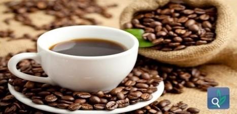 مخاطر ادمان القهوة والكافيين - الصحة النفسية | صحة عامة | Scoop.it