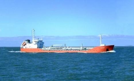 El peso de la ecologística en el sector marítimo báltico | Blogística | Scoop.it
