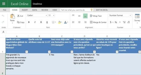 Excel: Créez vos sondages avec Excel Surveys – Le CFO masqué | MSExcel | Scoop.it
