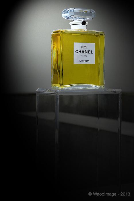 Chanel & Coco au Palais de Tokyo - Actu Waooimage | L'Etablisienne, un atelier pour créer, fabriquer, rénover, personnaliser... | Scoop.it