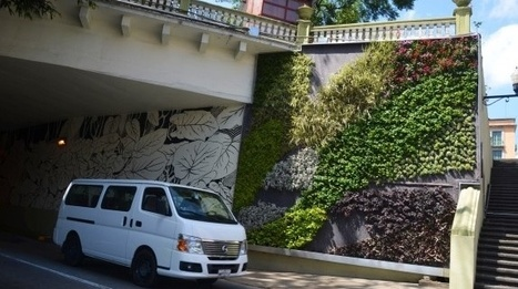 Jardines verticales mejoran la calidad del aire - Periódico y Agencia de Noticias Imagen del Golfo | Jardines Verticales y azoteas verdes. | Scoop.it