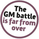 GM potatoes good? This is what The Soil Association  thinks GM | GMO GM Articles Research Links | Scoop.it