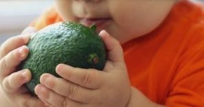 Starting Solid Foods For The Baby | Blossoms' | Scoop.it