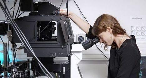Une Ruthénoise de 26 ans distinguée pour ses recherches | CPGE scientifiques ... what else ? | Scoop.it