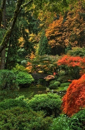 Nature At It's Best | Japanese Gardens | Scoop.it
