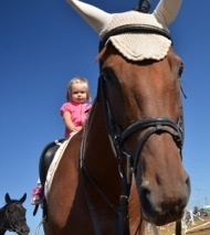 » Can Equine Therapy Improve Infant Attachment? - Equine Therapy | The Psychology of Athletics | Scoop.it